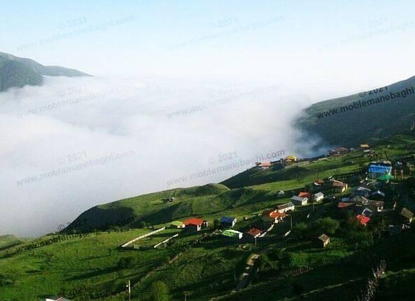 نمایی از شهرک ویلایی در شمال با مه غلیظ و رطوبت بالا